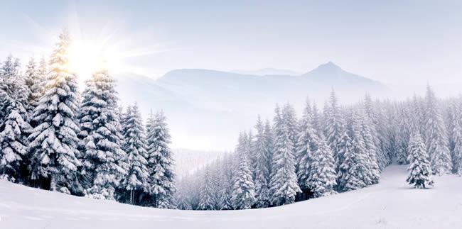 wintersportvakanties in Europa